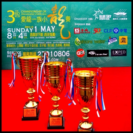 第三屆愛龍一族小龍賽 The 3rd Championship of Dragon Boat Lovers 2016 - RESULTS